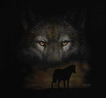 Yeux du loups